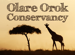 Olare Orok Conservancy