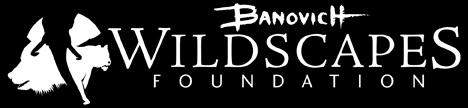 The Banovich Wildscapes Foundation