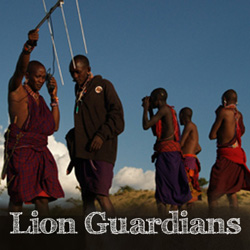 Lion Guardians